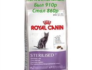 Доставка кормов для кошек и собак Самые низкие цены на корма известный производителей, Гатчина - Корм для животных