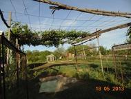Продам дачу В районе совхоз Весна, на участке 10 соток земли, абрикос, вишня, яблони, орех, крыжовник, малина, клубника, есть емкость для воды на 9 , Саратов - Сады